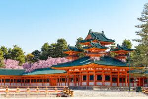 京都-平安神宮-桜-風景