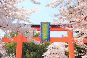 京都-平野神社-桜-門