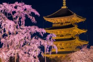 京都-東寺-ライトアップ-イメージ