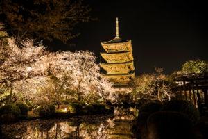 京都-東寺-ライトアップ