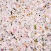 京都-桜-温泉-イメージ