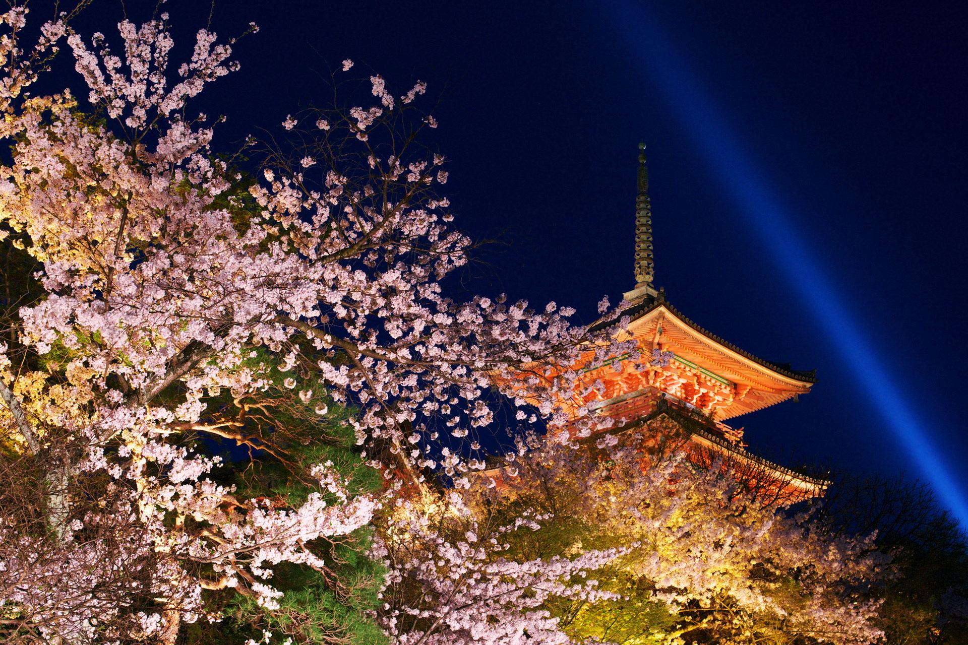京都-清水寺-ライトアップ