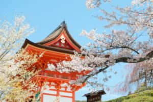 京都-清水寺-桜-イメージ