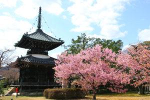 京都-清涼寺-イメージ