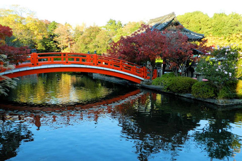 京都-神泉苑