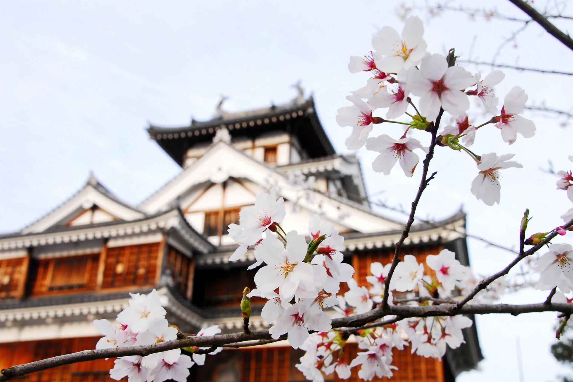 京都-福知山城-イメージ