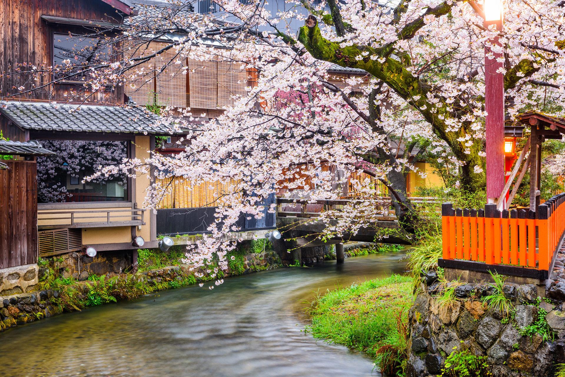 京都-観光-イメージ