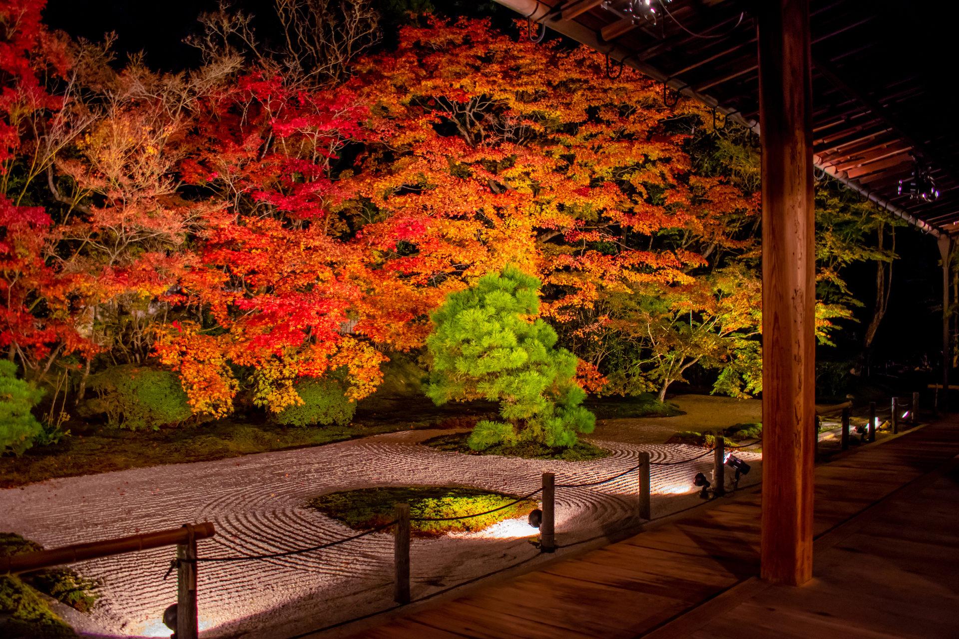 南禅寺-天授庵-秋のライトアップ