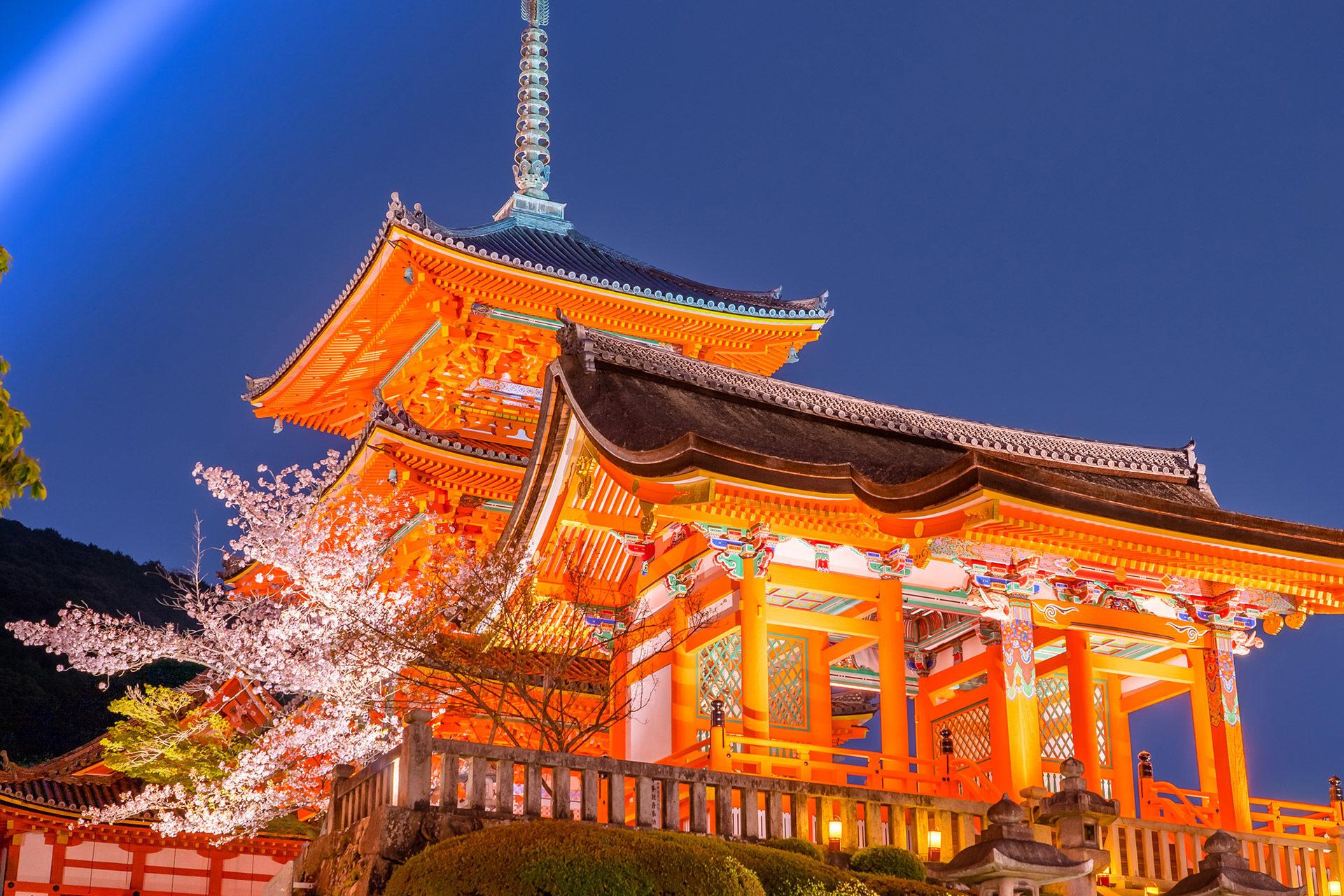清水寺-桜-ライトアップ