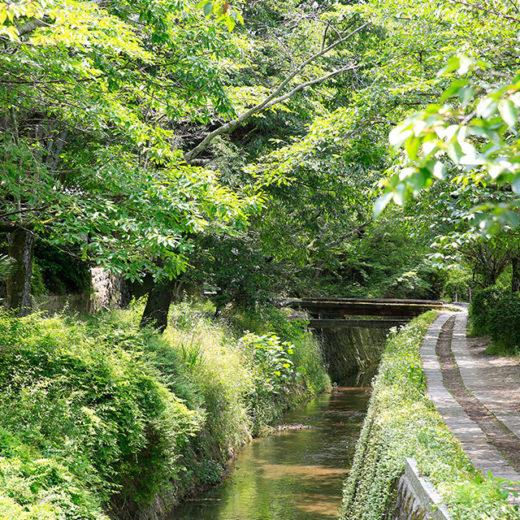 京都_哲学の道