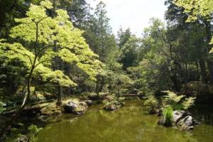 西芳寺-黄金池