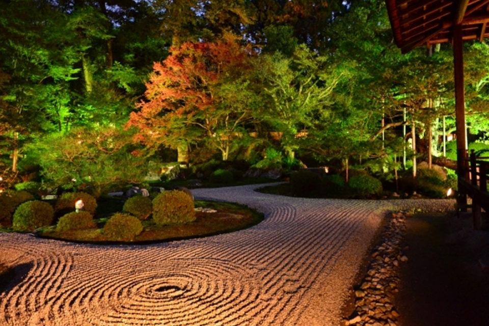 京都_曼殊院の庭園