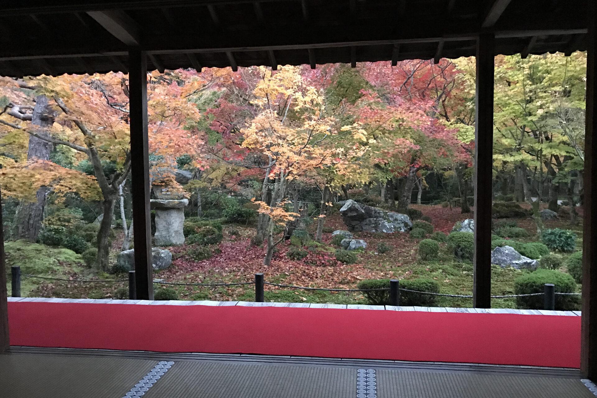 京都 圓光寺