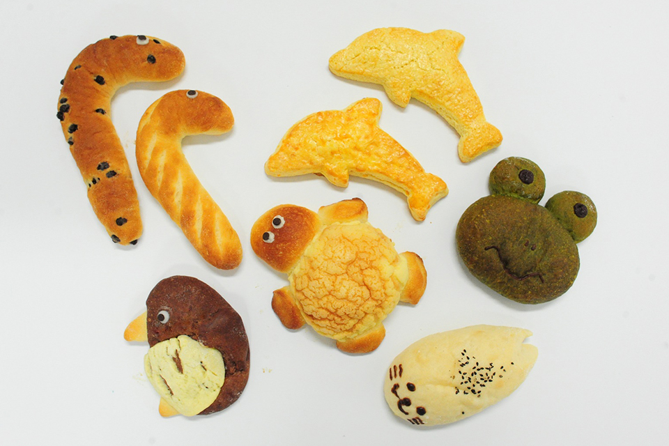 京都水族館_すいぞくパン