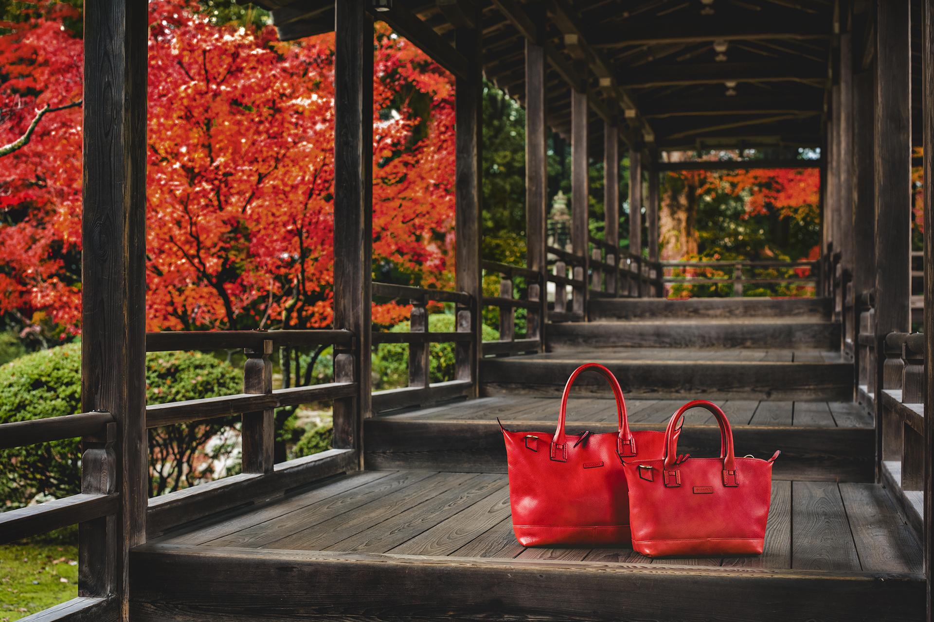 大覚寺 京都の紅葉